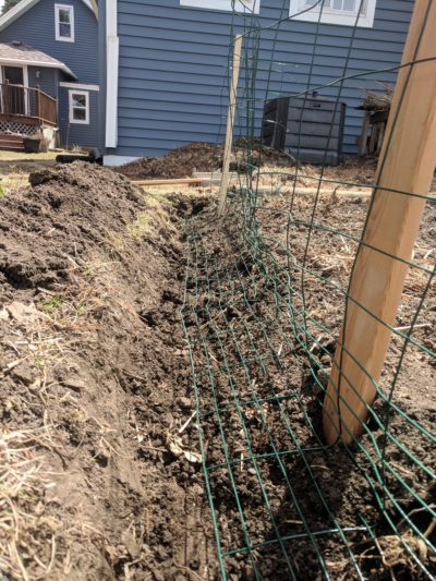Photo of the fence trench with the fencing wire bent into the trench to prevent rabbits from being able to dig under the fence.